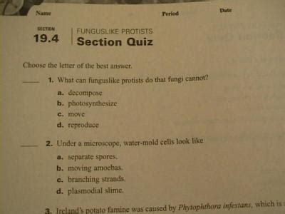 modern biology section 6 1 review answers holt mcdougal biology teacher s test book with answers 10