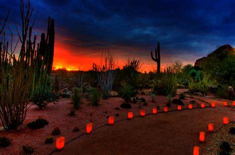 las noches de las luminarias  desert botanical garden