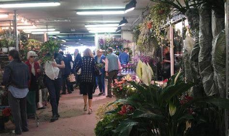 mercato dei fiori roma prezzi interno mercato foto di mercato dei fiori roma