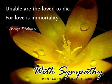 sympathy card messages greetingscom