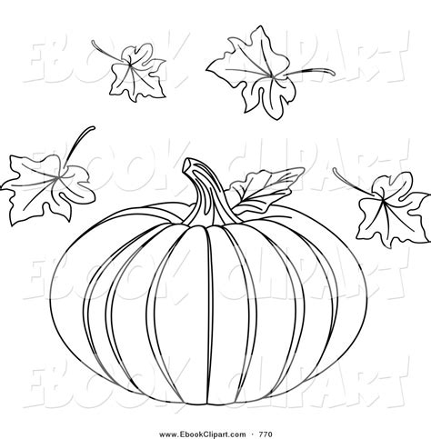 Outline Of A Pumpkin Leaf by Coloring Book Flowers Outline Pumpkin Leaf Clipart Outline Pictures Traceable Pictures