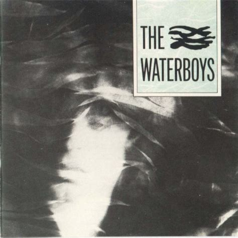The Waterboys   The Waterboys   Reviews   Album of The Year