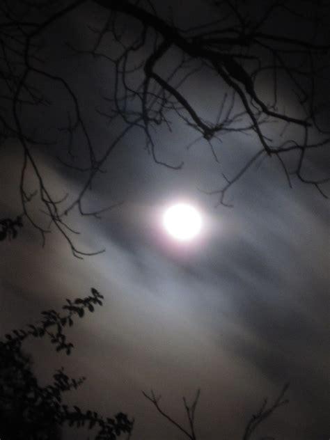 here comes the buck moon usatodaycom tropical texana farmer s almanac moon names