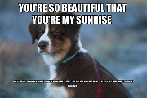 You Are Beautiful Meme - you re so beautiful that you re my sunrise and i d like