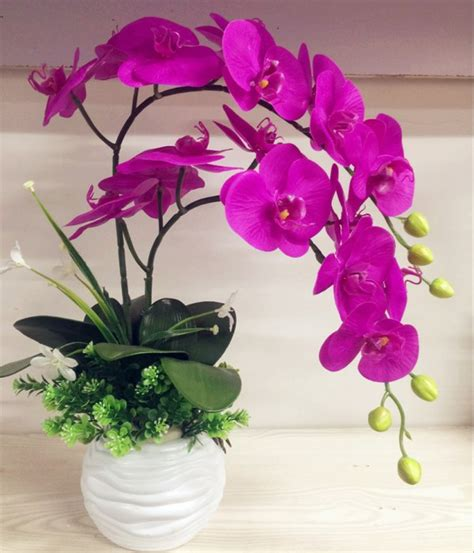imagenes de flores naturales orquideas 4 increibles ideas de arreglos florales con orqu 237 deas
