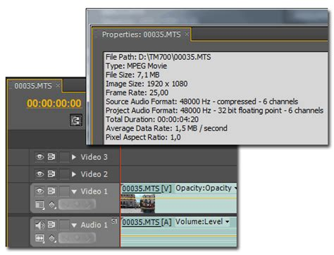 adobe premiere pro quicktime codec экспорт в quicktime mov