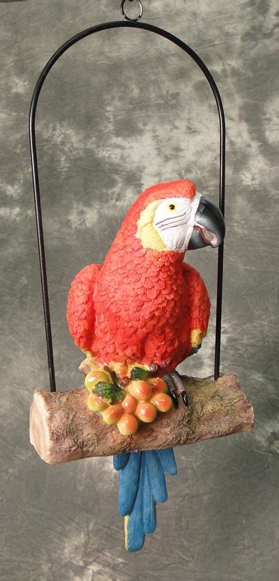 macaw swing macaw parrot on swing globe imports