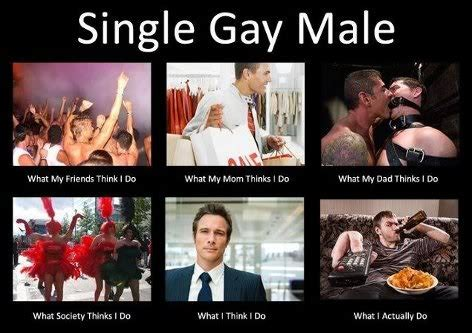 Gay Love Memes - pin by craig brown on random funny cool stuff