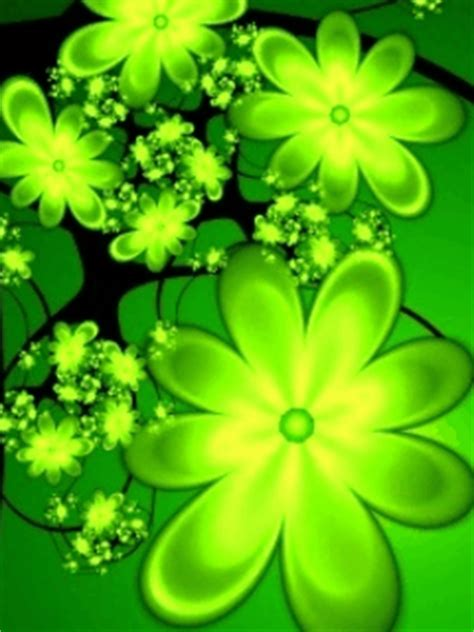 animated pretty color flowers mobile phone wallpapers
