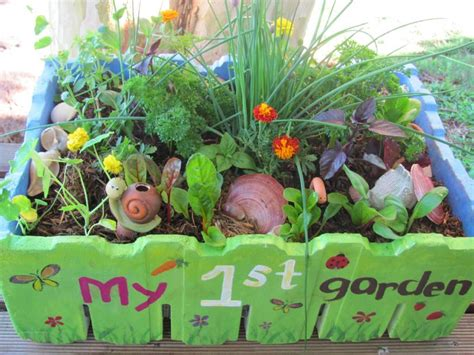 Seed And Garden by Getting Into Gardening Vanderwees Home Garden