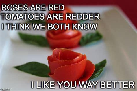 Tomato Meme - tomato rose imgflip