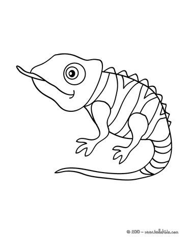 Cute Chameleon Coloring Pages Hellokids Com Chameleon Coloring Page