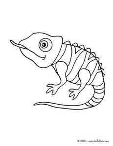 chameleon template chameleon coloring pages hellokids