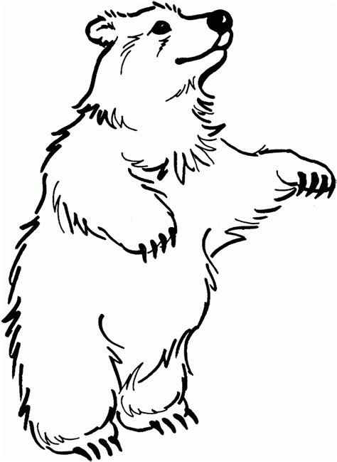 cartoon bear coloring page cartoon black bear cliparts co