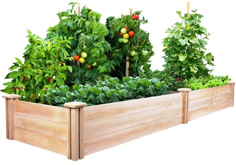 Raised Vegetable Garden Beds Let S Grow Vegetables How To Plant A Vegetable Garden In Raised Beds