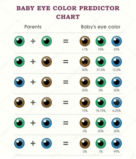 baby eye color baby eye color predictor chart template stock vector