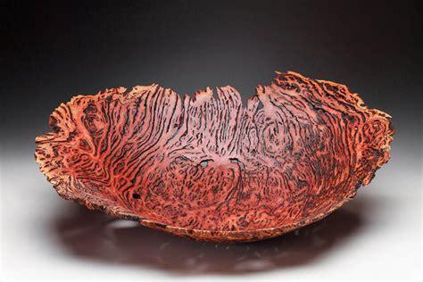 eucalyptus wood burls  woodworking artist steve noggle