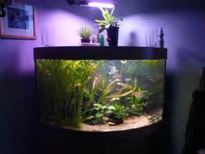 Aquarium For Home Decoration Fish Tank Decoration Ideas Decorating Ideas