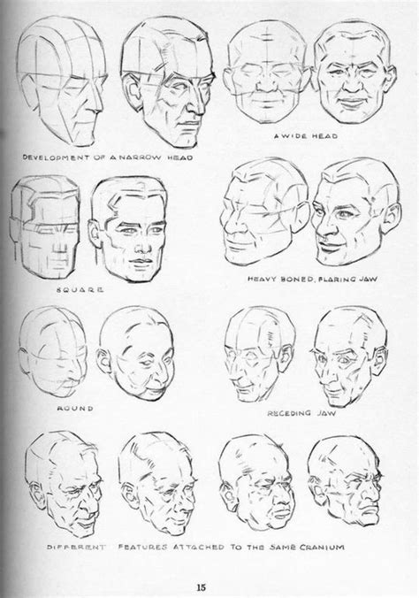 different head shapes men 17 best images about drawing heads faces on pinterest
