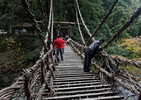 vine bridges  iya valley  shikoku japan