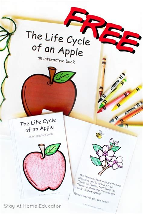 playdough mats booklet entire booklet printable 1656 best kindergarten images on pinterest kindergarten
