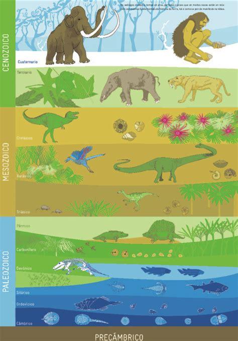 Calendario Geologico Naturaleza Gabriela Oyarzun