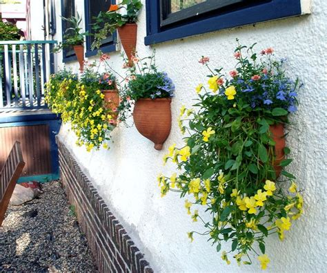 Plastic Half Wall Planters by Top 25 Best Plants For Hanging Baskets Ideas On