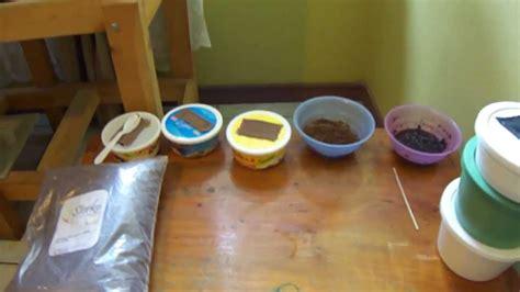 como hacer una cepa de grindal alimento vivo  peces youtube