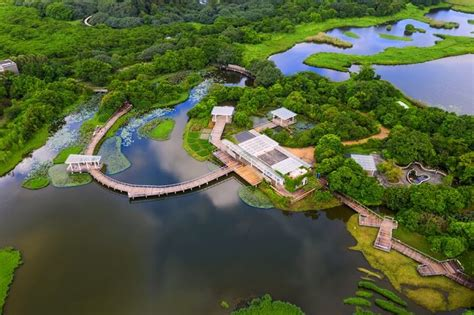 hong kong wetland park  complete guide  vacationers
