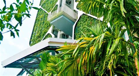 green design indonesia indonesia ifc and gbc launch edge green building