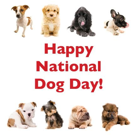 happy national puppy day happy national day of dogs picture