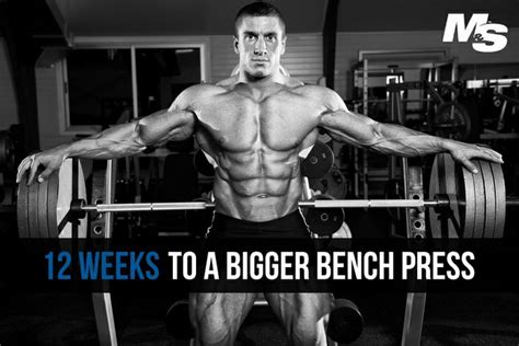 bench press does not build a bigger chest 13 best chest exercises images on pinterest chest