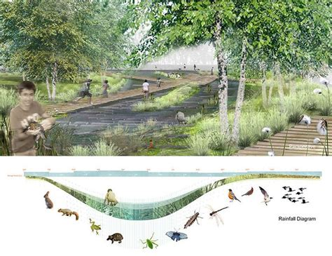 Landscape Architecture Studies Best 25 Landscape Architecture Section Ideas On