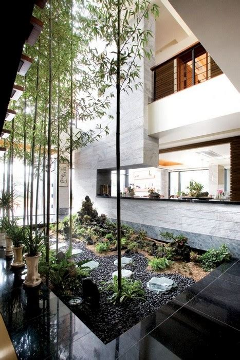 interior designs  indoor trees messagenote