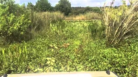 airboat fails fail airboat flip airboaters anonymous 9 7 14 youtube