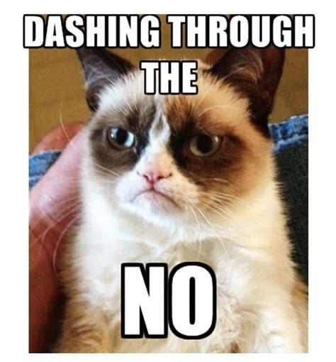 Tard The Grumpy Cat Meme - tard the grumpy cat tard the grumpy cat lolcats