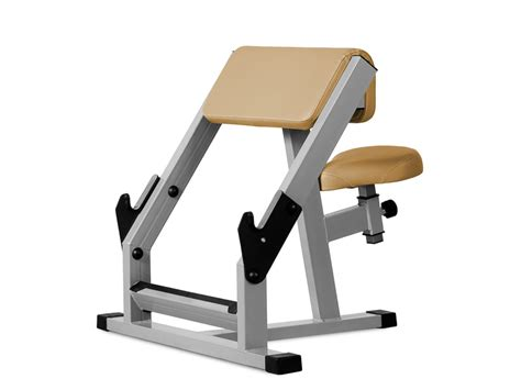 scott curl bench mastersport do ćwiczeń mięśni grzbietu z obciążeniem stojąc