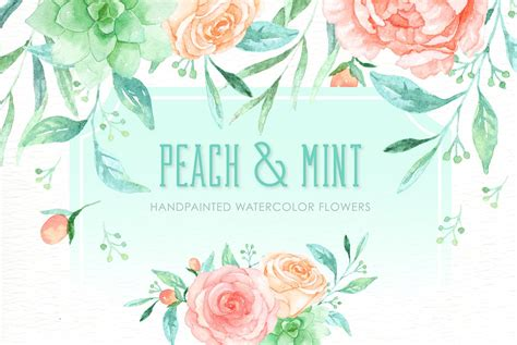 Peach and Mint Watercolor clipart ~ Illustrations