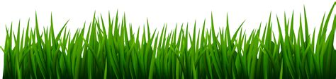 green grass clipart green grass background clipart collection