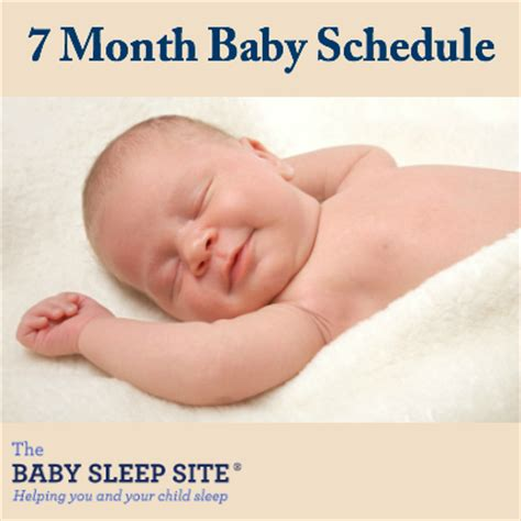 7 month old baby schedule | the baby sleep site baby