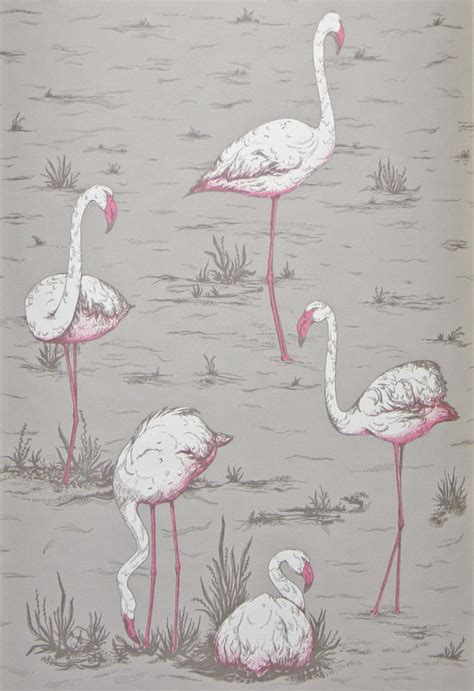 flamingo wallpaper cole and son cole and son wallpaper flamingos taupe grey one metre by