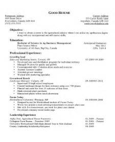 How To Write Experience On Resume doc 943860 sle resumes for high school students with