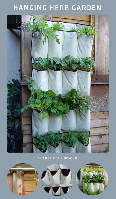indoor apartment herb garden 40 best my diy indoor garden images on vegetable garden gardening and apartment