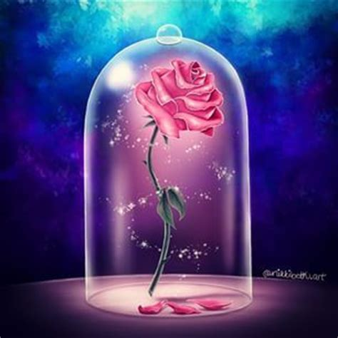 rose in beauty and the beast 25 best ideas about enchanted rose on pinterest uk