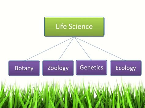 biography definition in science life science est