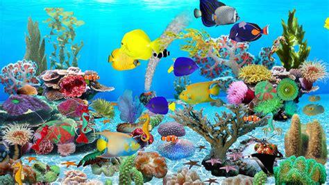 pc cartoon themes free download blue ocean aquarium download