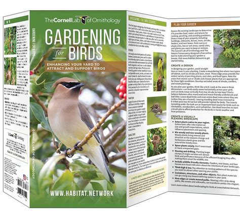gardening for birds gardening for birds cornell lab pocket guide