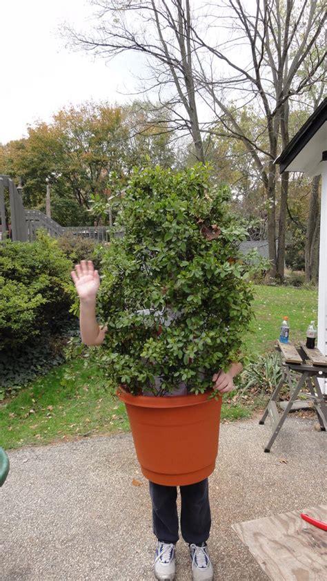 shrub bush plant costume chicken wire costumes