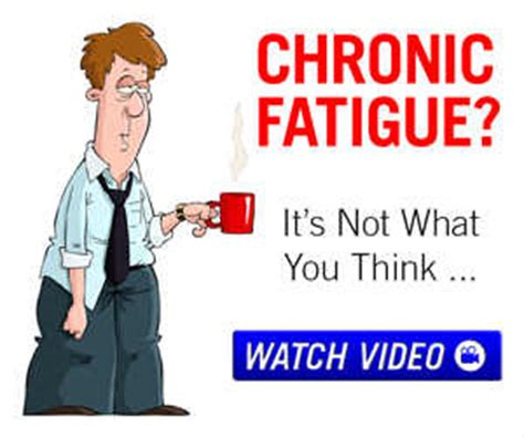 weight management probiotics digestive health weight management probiotics easy