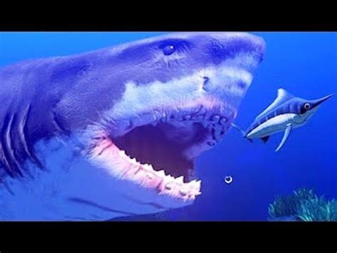 mangÉ par un immense requin ! | feed and grow: fish